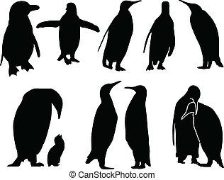penguin collection - vector - illustration of penguin...