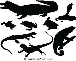 reptils - vector