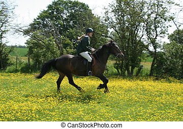 Riding in Buttercups