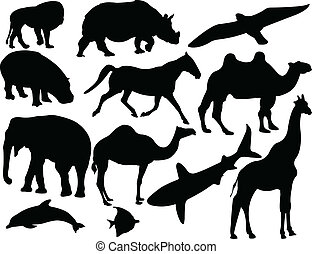 animal collection - vector