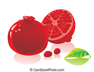 pomegranate on a white background
