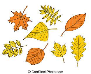 Stock Vector Illustration: yellow autumn leaf
