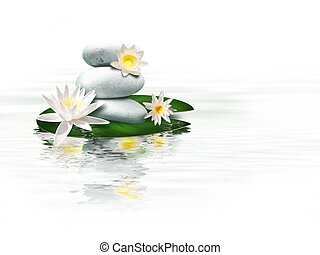 water lily - bright stones and lily flowers on the water...