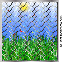 grass behind bars - blooming green meadow, butterfly and...