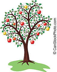 apple tree with fruits - vector design of apple tree with...