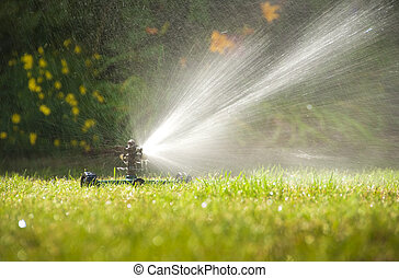 Lawn sprinkler spraying water over green grass in summer