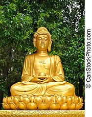 golden buddha statue meditating
