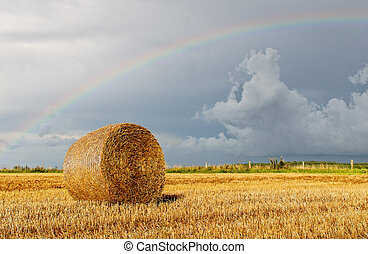 rainbow - a rainbow over the countryside