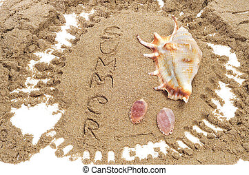 summer on the beach - a pile of seashells on the sand and...