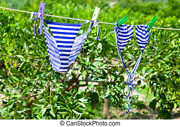 swimsuit in green garden - agrotourism - bikini in green...