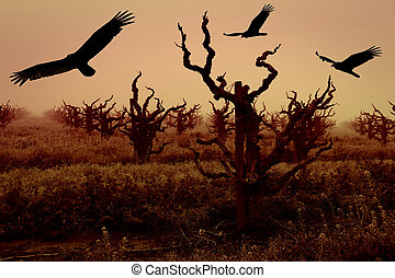 Silhouettes of Turkey Vultures and Grapevines - Turkey...