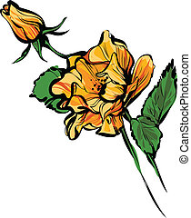 ORANGE big and small rose buds - a ORANGE big and small rose...