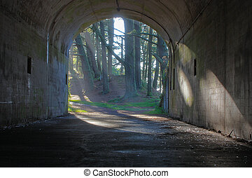 light at the end of tunnel - trees lit by sunlight at end of...