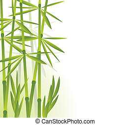 bamboo forest - vector illustration of bamboo forest