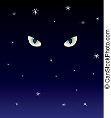 cats eyes in the dark