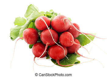 Fresh radishes - Fresh elite radishes isolated over white