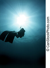 Freediver - A free diver make the long swim back to the...