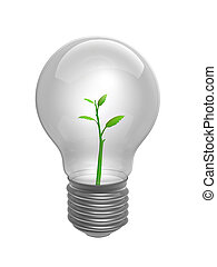 bulb with plant inside
