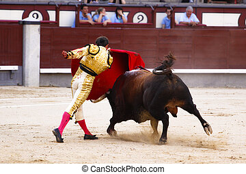 Traditional corrida - bullfighting in spain - MADRID - JUNE...