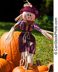 Scarecrow in Pumpkin Patch - Tiny scarecrow made of straw...