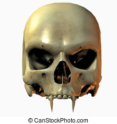 Vampire Skull Front View closeup Isolated on cutout on clean...
