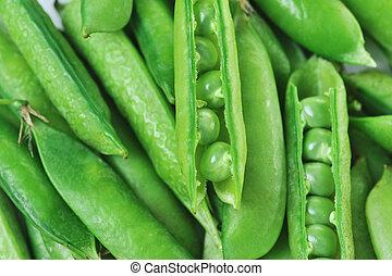 green peas - Freshly picked sweet green peas. peas in open...