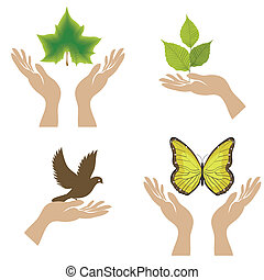 Nature Icons. Vector illustration