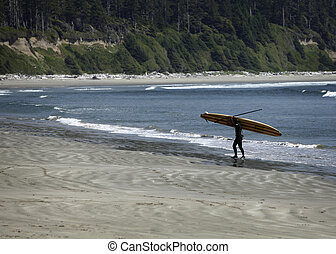 surfer carrying a surfboard on a beach