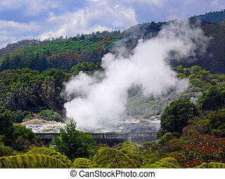 Geyser, Rotorua, New Zealand - Goethermal activity in...