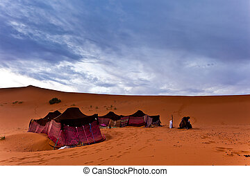 beduíno, Barracas, sahara, deserto