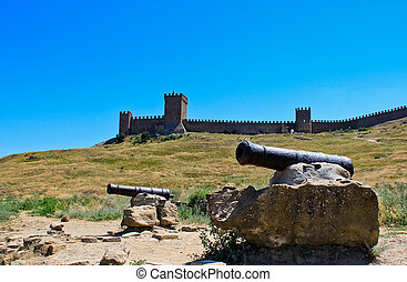 Cannons - Two cannons are standing on a field in front of...