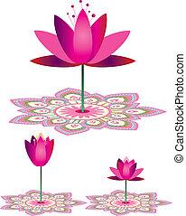 Lotus - Stock Illustration: Lotus pattern