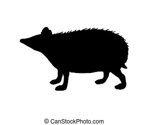 The black silhouette of a hedgehog on white