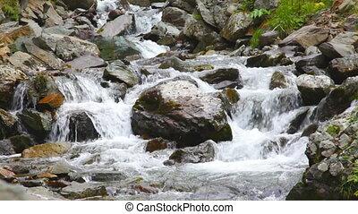 mountain stream flows on stones
