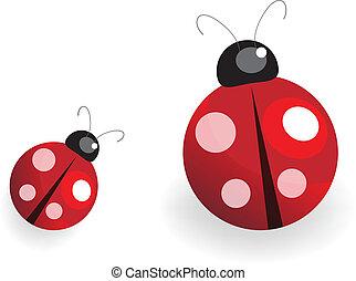 Lady Bug - illustration of a lady bug over white background