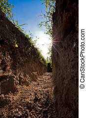 Trench - Low view of digged trench