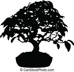 Bonsai silhouette - vector
