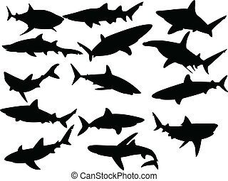 Collection of sharks silhouette - vector