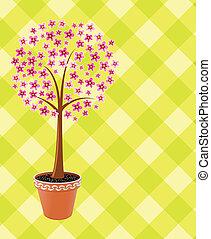 pot tree in blossom