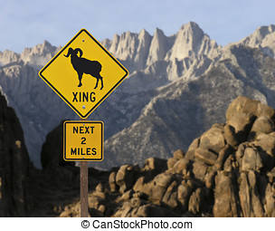 Big Horn Sheep Sign with Mt Whitney - Big Horn sheep caution...