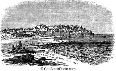 Jaffa in Israel vintage engraving - Jaffa in Israel, during...