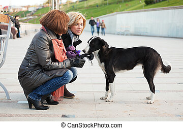 Two young women with a stray dog.