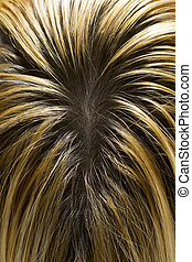 Blonde Hair with Dark Roots - Blonde Hair with Visible Dark...