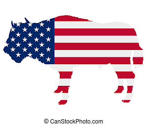 Buffalo in stars and stripes