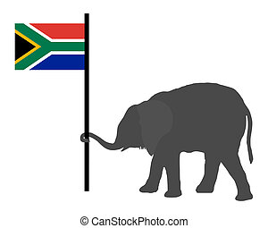 Elephant baby with flag of south Africa