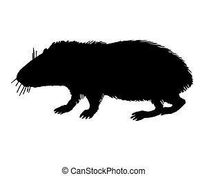 The black silhouette of a guinea pig on white