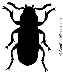 Mealworm silhouette