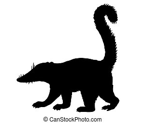 Coati silhouette