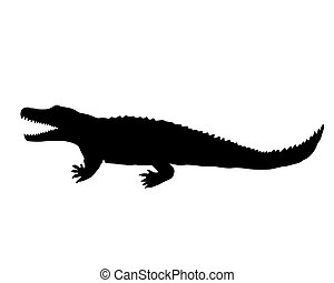 Nile crocodile silhouette