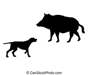Two animals, setter and boar meet face to face